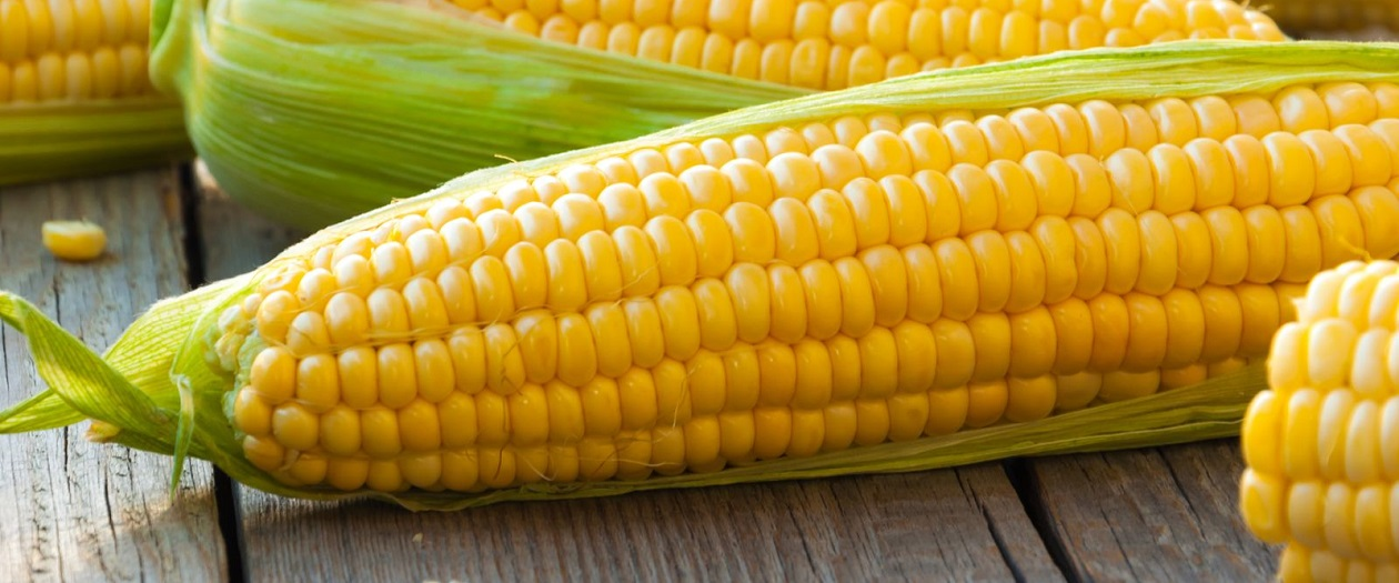 How Corn Can Keep Scratches Off Your Car