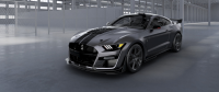 "Ford Raffles ""Venom"" Mustang Shelby GT500 for Charity"